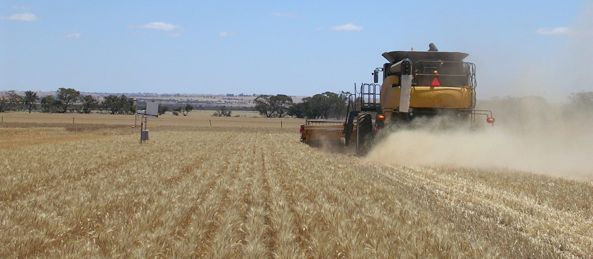 Increasing water use efficiency, grain yield and profit in a no-till system (Western Australia)